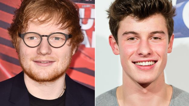 Ed Sheeran Crashed A Shawn Mendes Concert And Fans Went Wild