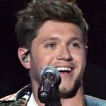 Niall Horan's Flicker Documentary Is Here: 8 Things We Learned