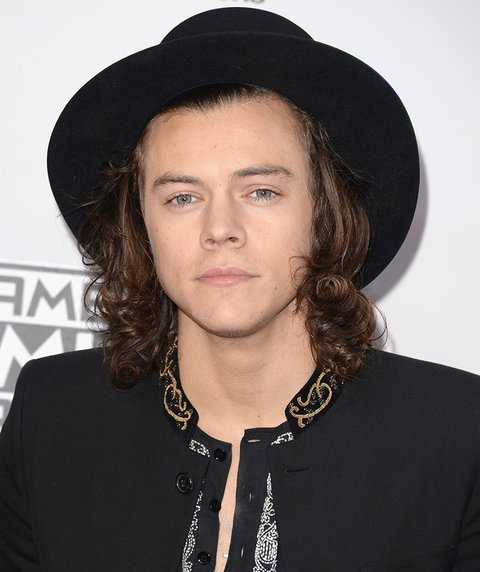 See How Harry Styles' Hair Has Transformed In One Year - MTV Harry Styles Hair 2014
