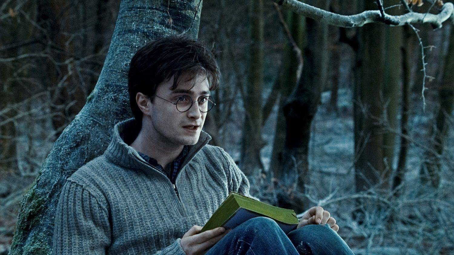 36 Times You Definitely Did Not Want To Be Harry Potter - MTV