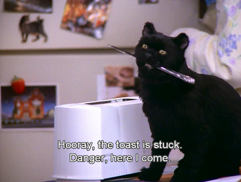 What Does Salem The Cat Look Like As A Human